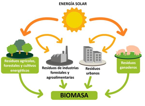 biomasapag